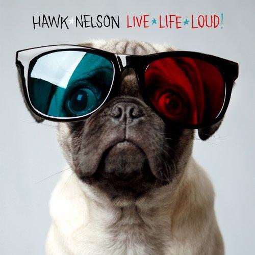 Hawk Nelson!