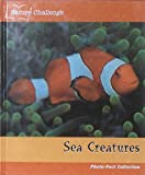 img - for Sea Creatures (Photo-Fact Collection) book / textbook / text book