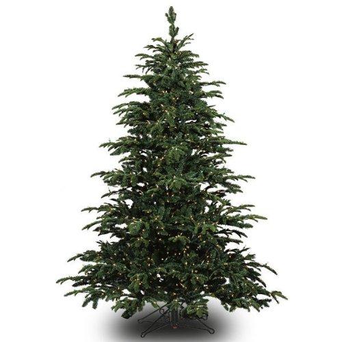Barcana 3-Foot Star Fir Tabletop Christmas Tree with 50 Clear Mini