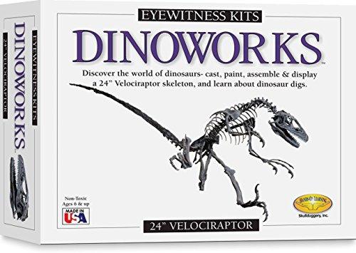 Skullduggery Eyewitness Kit Dinoworks Velociraptor Skeleton Casting Kit