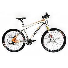 BEIOU Carbon fiber Mountain Bike complete bike MTB bike BOCBM05B (19'')