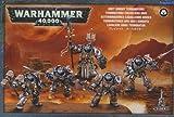 Warhammer 40,000 - Grey Knight Terminators