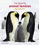 img - for My Favorite Animal Families book / textbook / text book