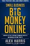 Small Business Big Money Online: A Pr...