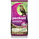 Peckish 2Kg Songbird Seed and Fruit Mix