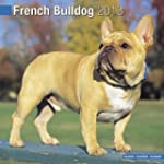 French Bulldog 2013 Wall Calendar