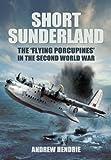 Andrew Hendrie Short Sunderland: The