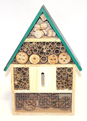 insect-bee-bug-house-hotel-shelter-box-c