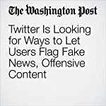 Twitter Is Looking for Ways to Let Users Flag Fake News, Offensive Content | Elizabeth Dwoskin