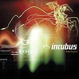 Pardon Me (Acoustic) - Incubus