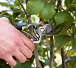 PROFESSIONAL PRUNING SHEARS - Heavy D...