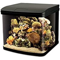 Interpet LED Lighting River Reef Glass Aquarium, 48 Litre