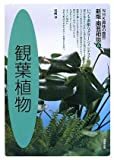 観葉植物について勉強中