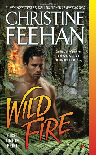 Image of Wild Fire (Leopards, No 4)