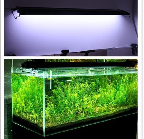 top 3 die besten led aquarien im test. Black Bedroom Furniture Sets. Home Design Ideas