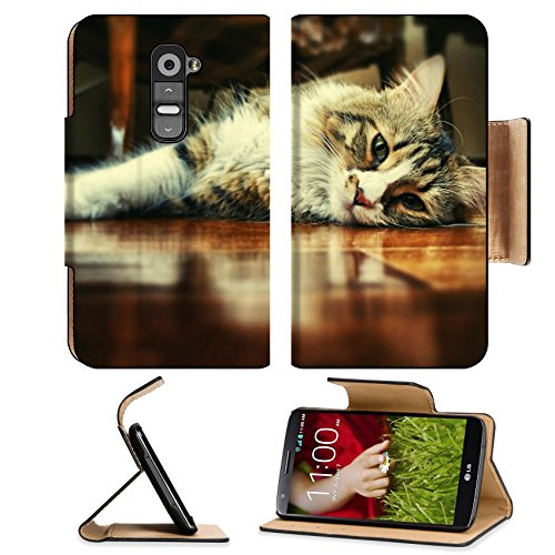 Floor Wood Indoors Cats Animals Lg G2 Flip Case Stand Magnetic Cover Open Ports Customized Made To Order Support Ready Premium Deluxe Pu Leather Msd Cover Professional Cases Accessories Graphic Background Covers Designed Model Folio Sleeve Hd Template Des front-578111