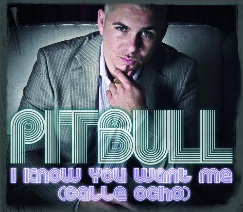 Pitbull - I Know You Want Me (Calle Ocho) - Zortam Music