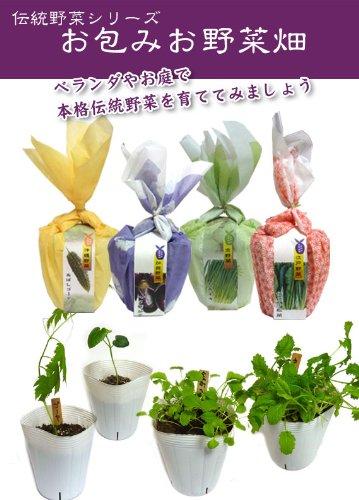 お包みお野菜畑 江戸野菜 伝統小松菜 小松菜 野菜 栽培セット 栽培キット