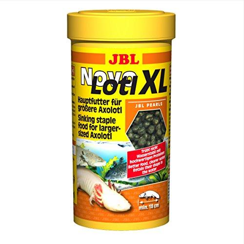 JBL Alleinfutter für große Axolotl, Perlen 250 ml, Novo Lotl XL 30358, 1er Pack (1 x 0.25 l)