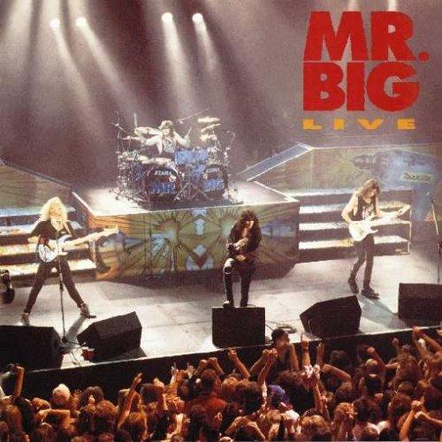 Mr. Big - Just Take My Heart Lyrics - Zortam Music