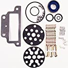 CKPN600A Ford New Holland Tractor Hydraulic Pump Repair Kit 2000 3000 4000 ++