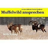 Muffelwild ansprechen: Die Altersansprache beim Muffelwild. Lämmer, Jährlinge, Schafe und Widder sicher und einfach...