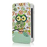 iPhone 6 Plus Case, Ludan Painted Series Soft TPU Super Lightweight Protective Owl Bumper Back Case for 5.5 inches iPhone 6 Cover