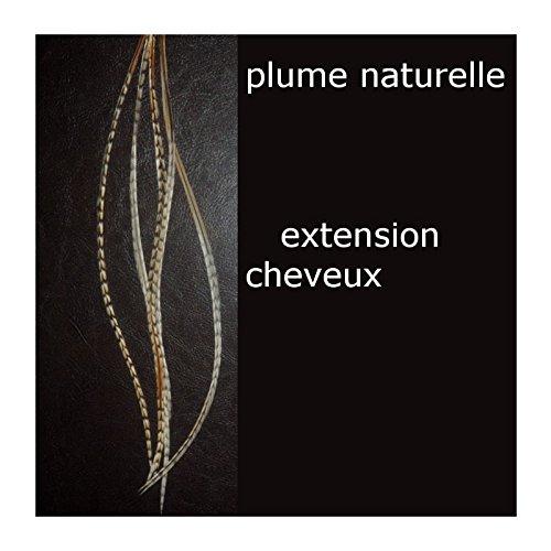plume naturelle XL grizzly cree extension de cheveux 24-30 ccm
