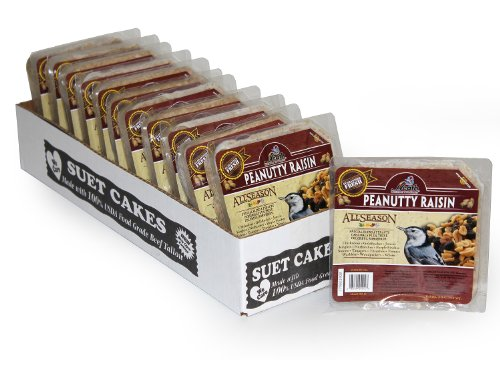 Heath Outdoor Products DD-12 Peanutty Raisin Suet Cake, Case of 12