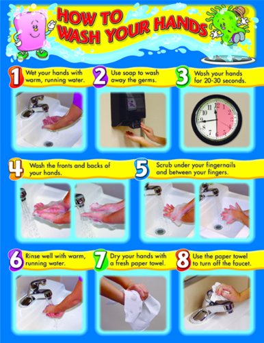 Carson Dellosa How to Wash Your Hands Chart (114021) (Hygiene Chart compare prices)