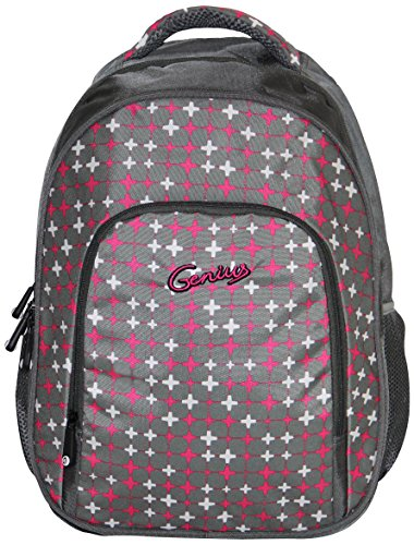 Genius Genius Gray Backpack (GN Back Pack 1408_GRY) (Multicolor)