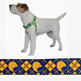 UCLA Bruins Deluxe Polyester Step-In Harness (Bruins Argyle, X-Large 1 in X 16-27 in) at Amazon.com