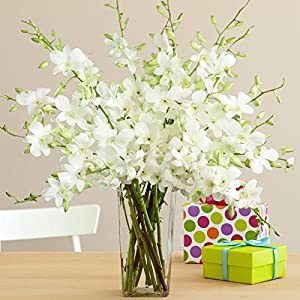 White Dendrobium Birthday Orchids - Flowers