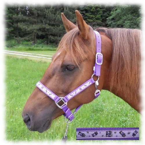 Speeda Halfter Cowsense, purple