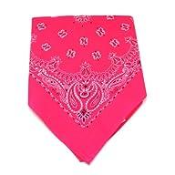19″ Neon Pink Bandana – (1 DZ)