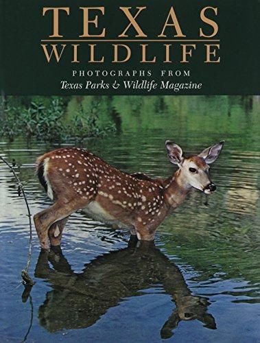 Texas Wildlife: Photographs from Texas Parks & Wildlife Magazine