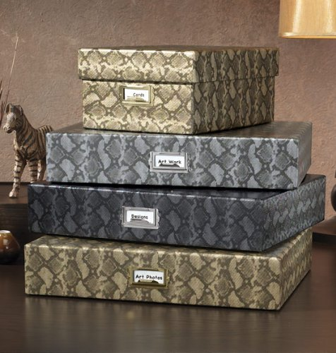 Snakeskin Shoe Box , Silver