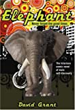 Elephant by David Grant (6-Sep-2007) Paperback