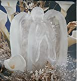 Reusable Angel Ice Sculpture Mold with Instructions, Tips and Ideas