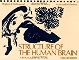 img - for Structure of the Human Brain: A Photographic Atlas book / textbook / text book