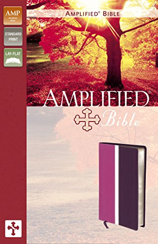 Amplified Bible: Dark Orchid / Deep Plum, Italian Duo-Tone