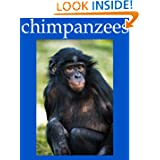 Chimpanzee Pictures and Fun Facts
