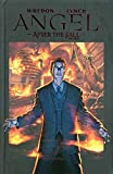 img - for Angel: After the Fall: First Night Volume 2 book / textbook / text book
