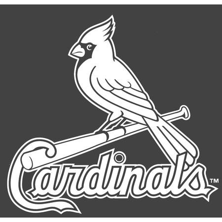 "St. Louis Cardinals Die-Cut Decal - 8""x8"" White at Amazon.com"