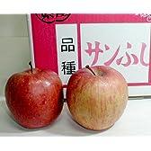 青森産 「ふじりんご」 10kg 中玉36~40個入り
