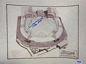 Willie Mays Autographed Hand Signed 11x14 Polo Grounds Sketch Photo PSA DNA #T45573 by Hall of Fame Memorabilia