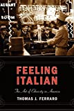 img - for Feeling Italian: The Art of Ethnicity in America (Nation of Nations) by Ferraro, Thomas (2005) Paperback book / textbook / text book