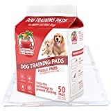 "Dog Training Pads- 50 Pack of Maximum-Absorption Puppy Pads w/Insta-Dry Technology offer Low Price, High Quality & No Tracking. Save Money & Frustration with Leak-Resistant Pads from California Pet Supply - 23.6"" x 23.6"" (Max-Absorbent, 50-Pack)"