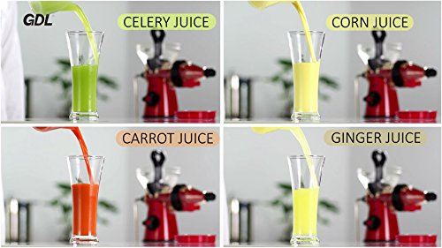 Gdl Manual Slow Juicer : GDL Manual Healthy Juicer Fruit Juicer Cold Press Slow Juicer Fresh Squeeze Juicer Kitchen Tools ...