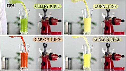 GDL Manual Healthy Juicer Fruit Juicer Cold Press Slow Juicer Fresh Squeeze Juicer Kitchen Tools ...